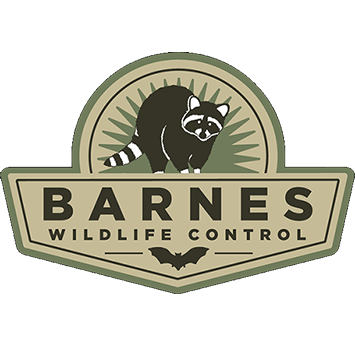 Wildlife Pest Control Web Design built Barnes Wildlife Control's 700+ page website