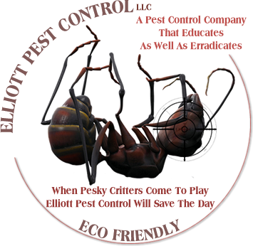 Wildlife Pest Control Web Design built Elliot Pest Controls website