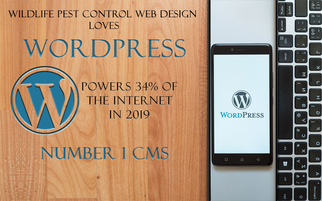WordPress Leads The Way